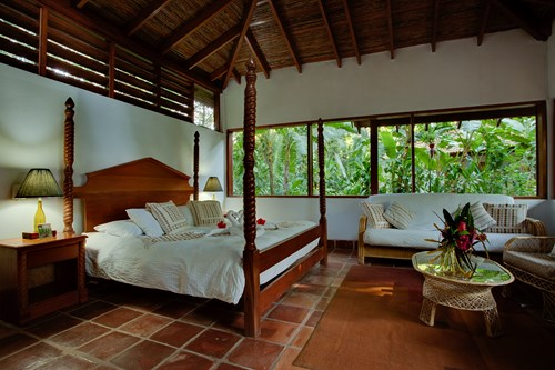 Jungle Bungalow Accommodations