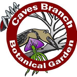 Explore Caves Branch Botanical Garden