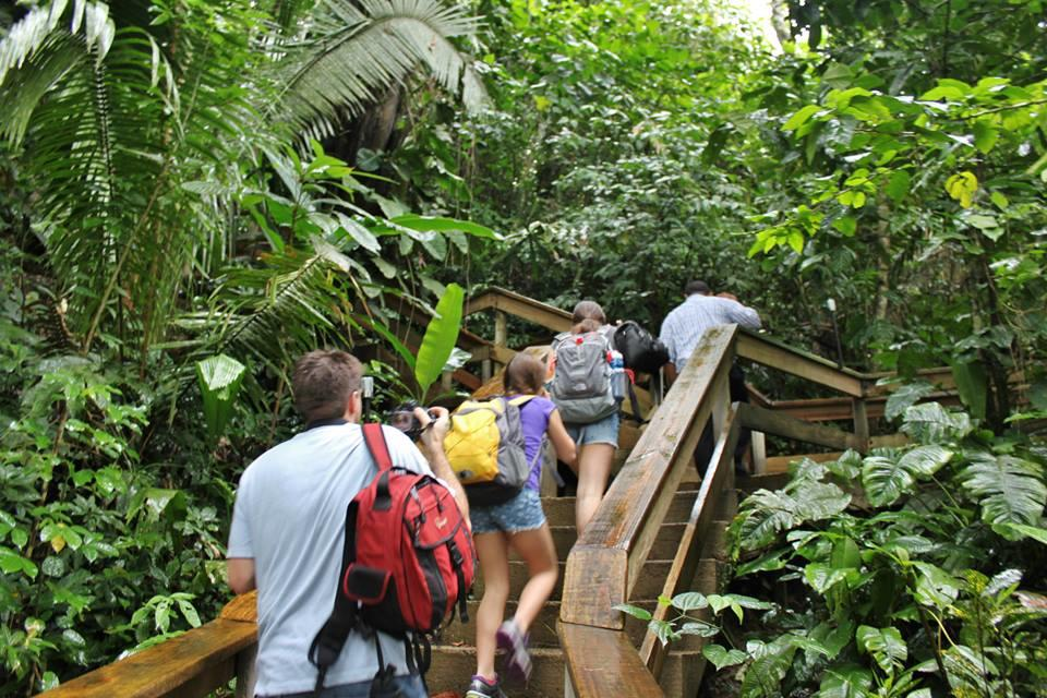 Beach and Jungle Adventure Vacation in Belize