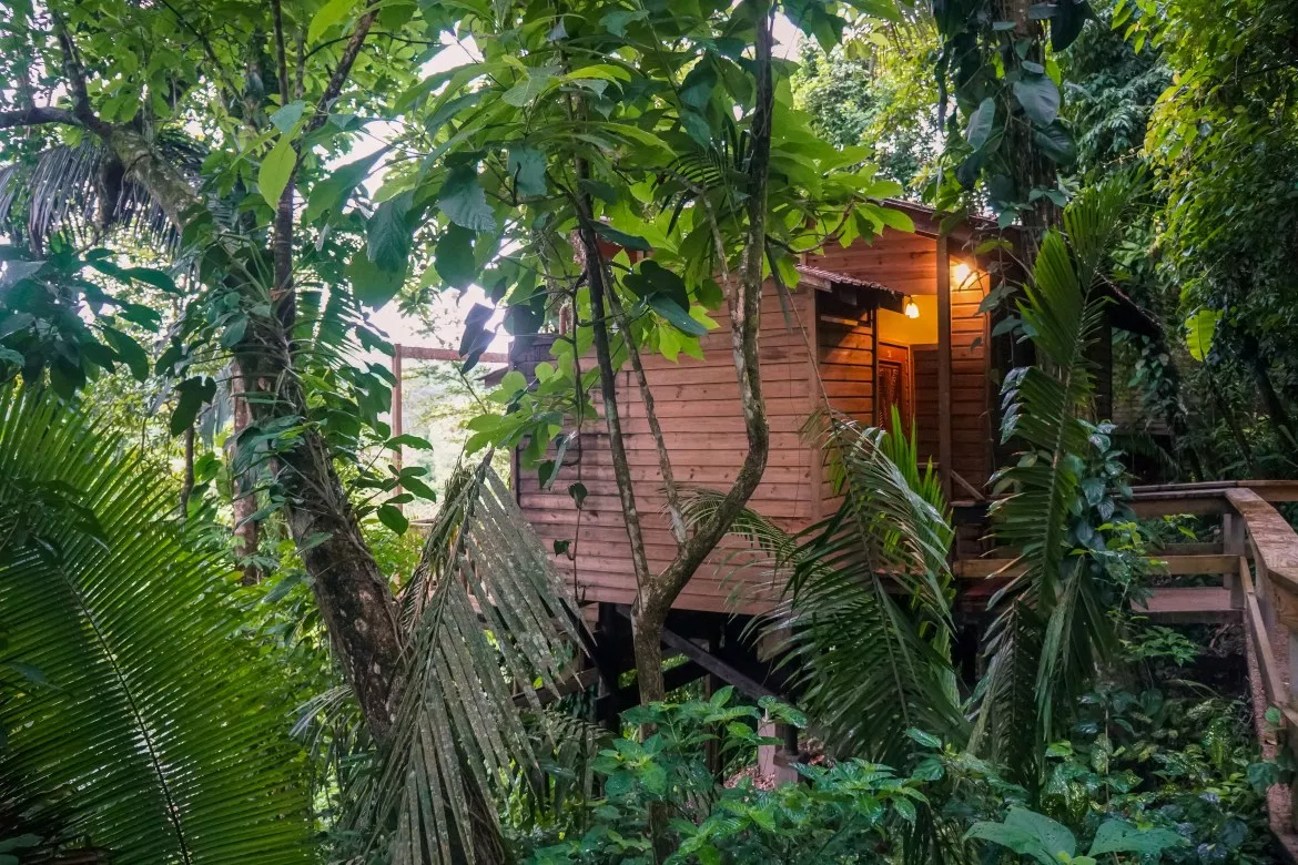 Adventure Vacation in the Belize Jungles
